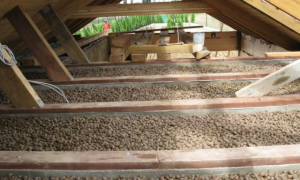 Как утеплить потолок в бане: минеральной ватой, керамзитом, опилками