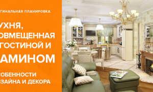 Кухня-гостиная с камином + фото