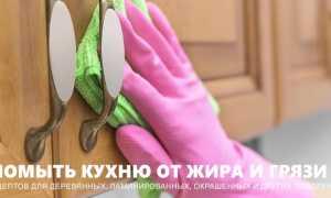 Чем отмыть жир на кухонных шкафах в домашних условиях: выбор средств