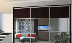 Раздвижные зеркальные двери для гардеробной + фото