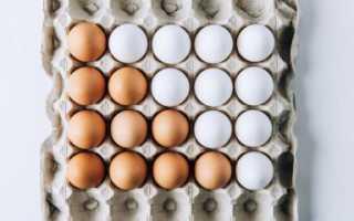 Срок хранения яиц: при какой температуре хранятся домашние яйца в холодильнике