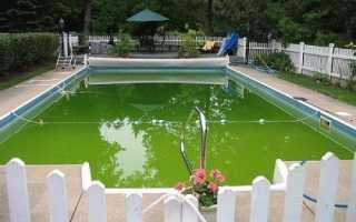 Что делать, чтобы не цвела вода в бассейне