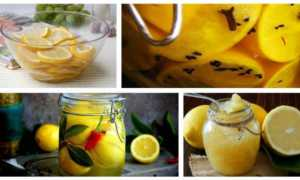 Как хранить лимоны в домашних условиях: на зиму, на длительное время свежими