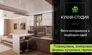 Кухня-студия: дизайн и фото интерьера