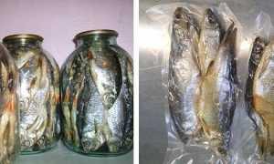 Как хранить вяленую рыбу в домашних условиях: можно ли в холодильнике и морозилке