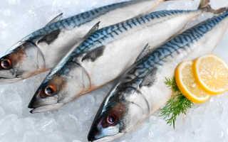 Хранение рыбы: сколько можно хранить охлажденный продукт в холодильнике без заморозки