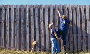 Можно ли ставить глухой забор на даче