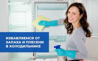 Плесень в холодильнике, что делать: как избавиться от ее запаха, чем обработать