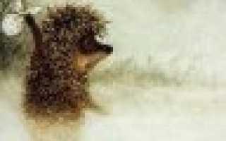 Антифриз в теплом полу
