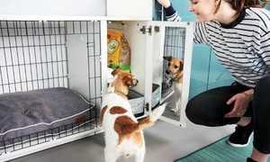 Домашний вольер для собаки в квартиру