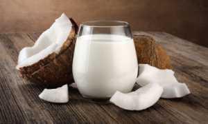 Как хранить кокос в домашних условиях: какие сроки хранения кокосового молока