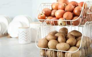 Как хранить лук: при какой температуре лучше хранить овощ в домашних условиях
