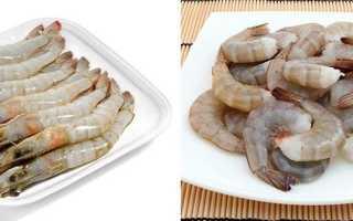 Как хранить вареные креветки: срок хранения продукта в морозилке и холодильнике