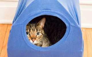 Как сделать домик для кошки из футболки