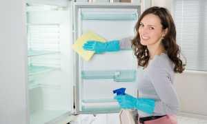 Чем помыть холодильник, чтобы не было запаха, в домашних условиях: как лучше