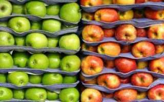 Как сохранить яблоки на зиму свежими в домашних условиях: в погребе и в квартире